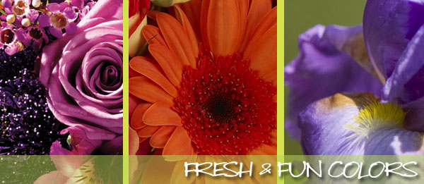 From fresh flowers to roses and much more, Roses and More Florist delivers beautiful flowers daily throughout Dallas