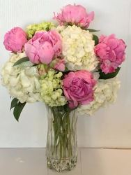 Precious Pink Peonies from Roses and More Florist in Dallas, TX
