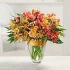 Awesome Alstroemeria from Roses and More Florist in Dallas, TX