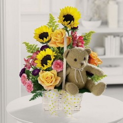 Teddy Bear Garden from Roses and More Florist in Dallas, TX