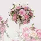 Pink Gerbera Daisy & Carnation Bouquet from Roses and More Florist in Dallas, TX