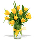 Cheerful Tulips from Roses and More Florist in Dallas, TX