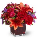 Autumn Grace from Roses and More Florist in Dallas, TX