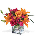 Uniquely Chic Bouquet from Roses and More Florist in Dallas, TX
