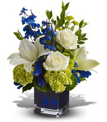 Serenade in Blue from Roses and More Florist in Dallas, TX