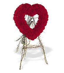 Forever Love from Roses and More Florist in Dallas, TX