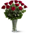 A Dozen Red Roses from Roses and More Florist in Dallas, TX